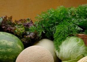 Comprar Nutrición vegetal Fertig forte