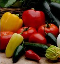 Comprar Regulador del crecimiento vegetal