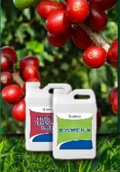 Comprar Planta estimulador del crecimiento