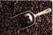 Café tostado Natural