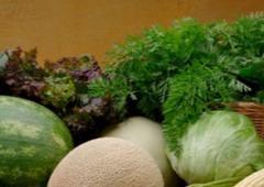 Nutrición vegetal Fertig forte