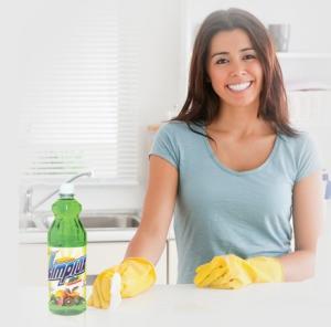 Disinfector para el lavado manual de vajillas