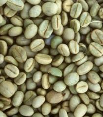 Café verde (crudo)