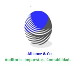 Pedido Servicios profesionales de auditoria, impuestos, contabilidad